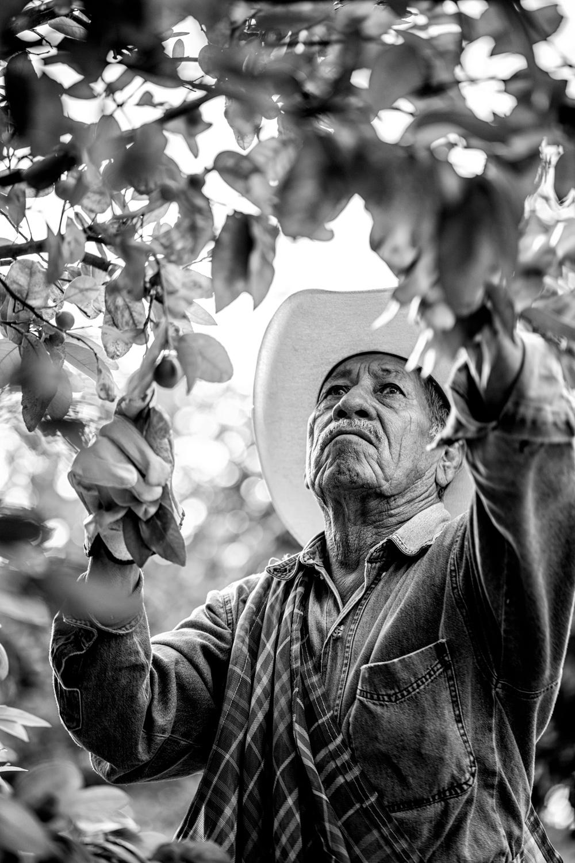 amway_mexico-farm_lab_1035