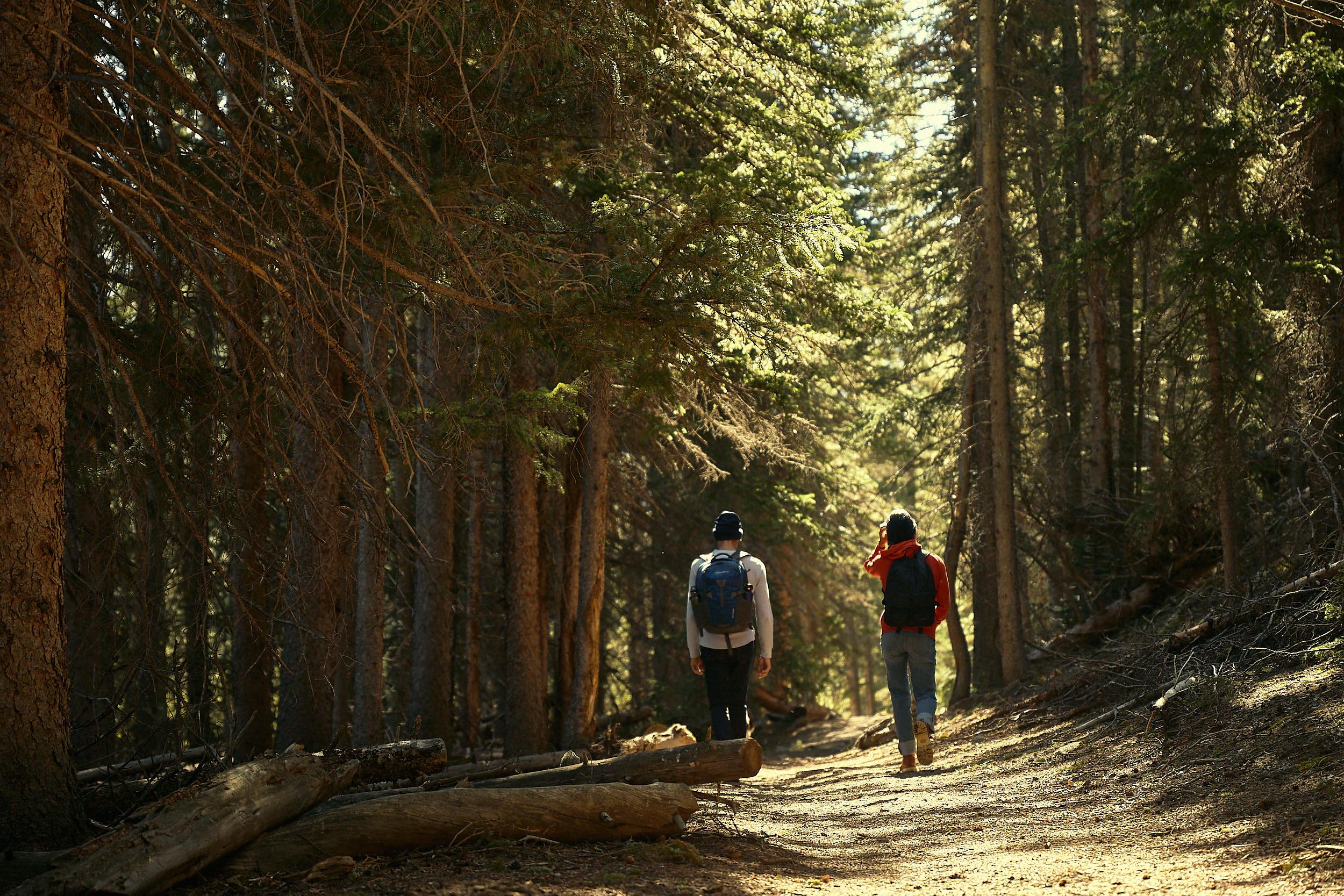 Eddie Bauer Fall 2020 Pike Forest